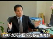 TVB8-文化中国采访报道总裁梁满林